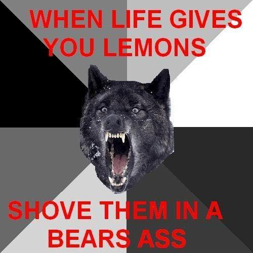 bears ass